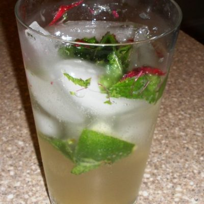 Sunday Sippers: Introducing the Bergamo(t)jito