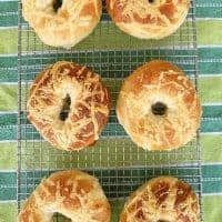 Asiago Cheese Bagels