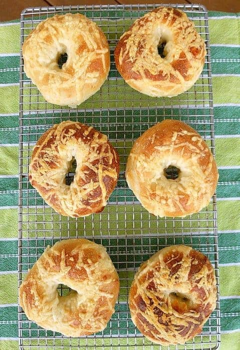 Asiago cheese bagels are chewy and brimming with cheese. If you love a big Panera bagel, you'll really love this Panera copycat version of their most popular flavor. Enjoy! #copycatrecipe #bagels #Panera