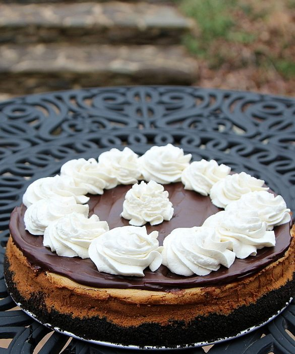 biscoff cookie butter cheesecake 2