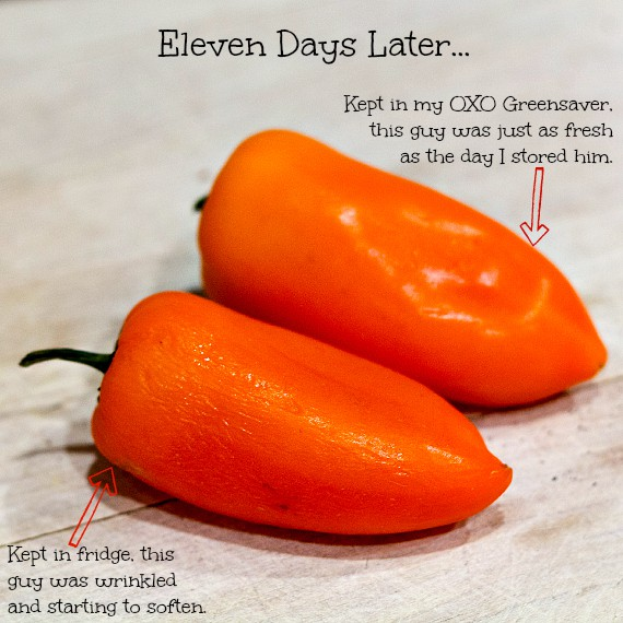 Tangy Pickled Peppers Stuffed with Herbed Goat Cheese-2