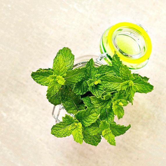mint for dessert panzanella | pastrychefonline.com