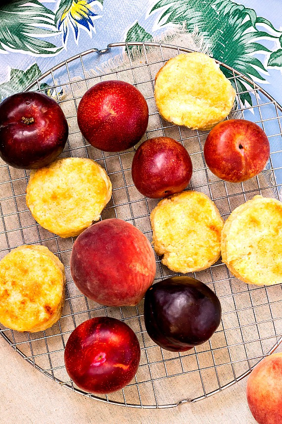 Stone Fruit and Sweet Cornmeal Biscuits for Dessert Panzanella | pastrychefonline.com