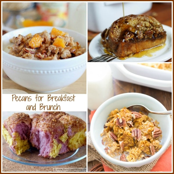 Here you'll find my Over100 Sweet and Savory Thanksgiving Pecan Recipes Roundup. There truly is something here for everyone including salad lovers, French toast lovers, seafood lovers, pie lovers and more. There are even gluten-free, vegan and paleo Thanksgiving recipes here, all featuring pecans. Your one-stop shop from everything from Thanksgiving breakfast and brunch to dessert! | pastrychefonline.com