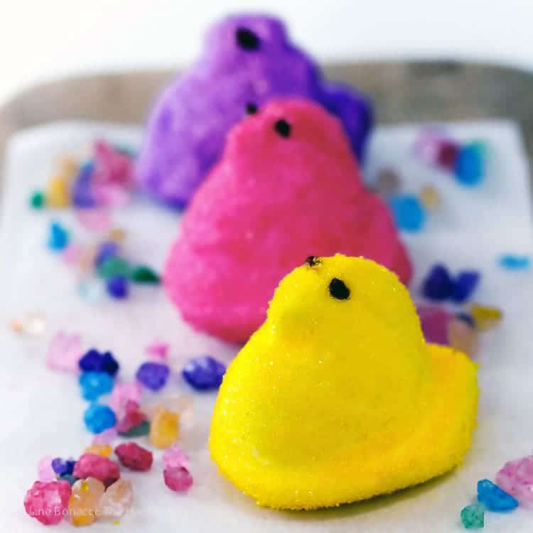 3 homemade marshmallow Peeps--yellow, pink, and purple--on a white platter