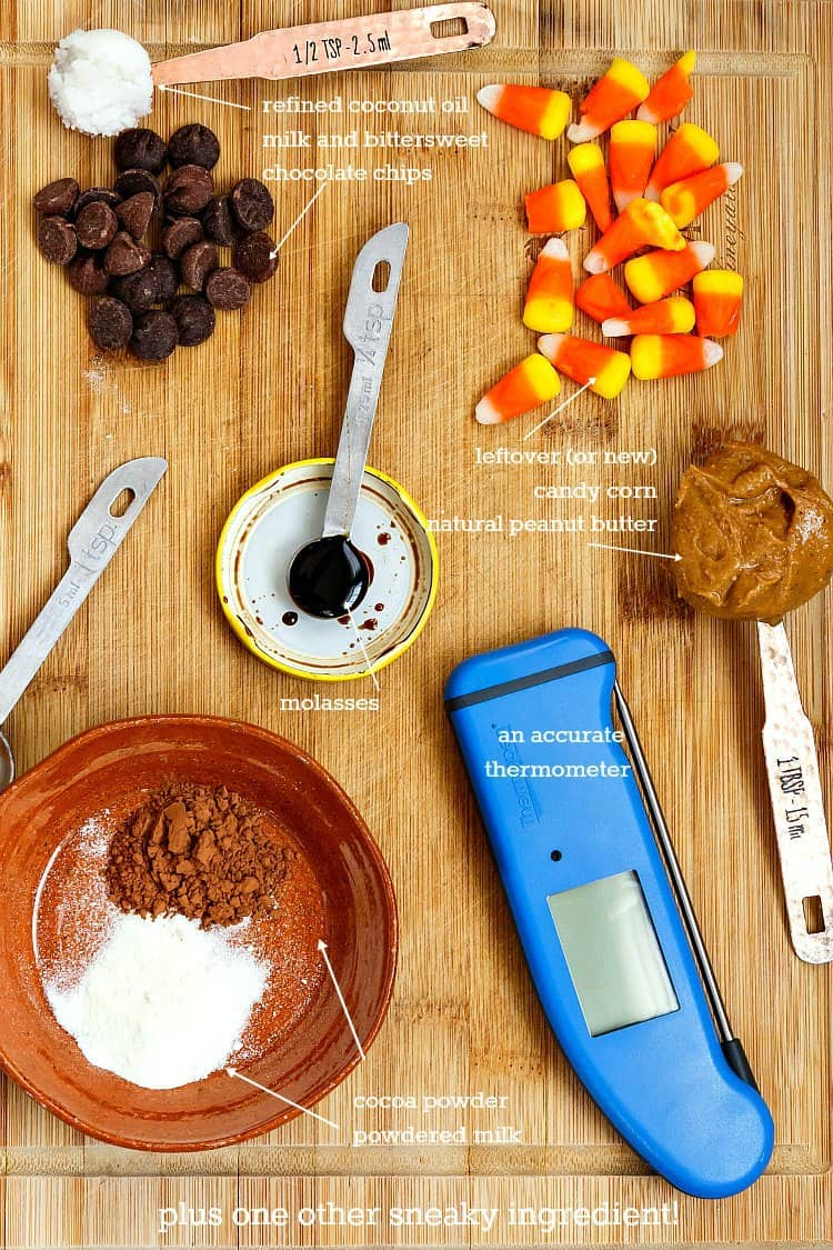 overhead shot of the ingredients in this butterfinger recipe: chocolate chips, candy corn, coconut oil, molasses, peanut butter, cocoa powder, milk powder, and a good thermometer