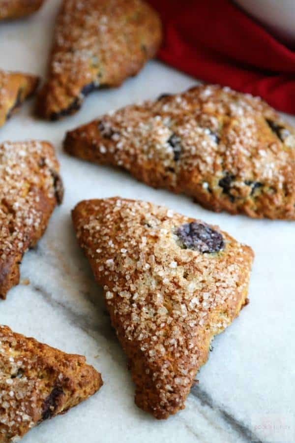 close up of triangular scones with dried cherries and coarse sugar