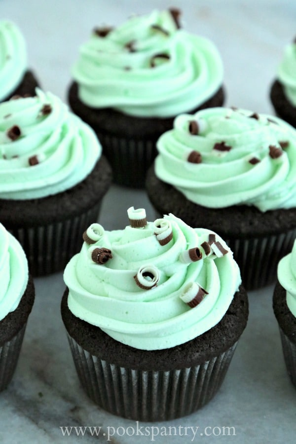 Devil's Food Cupcakes with Mint Buttercream