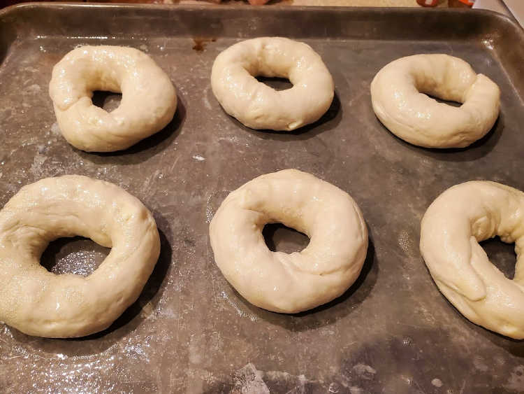 6 shaped bagels on a tray before baking