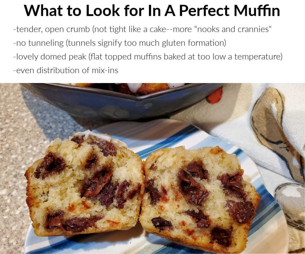 image of a split cherry chocolate chip muffin and text explaining four things to look for in a perfect muffin